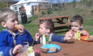 boys picnic