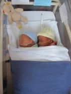 New twins