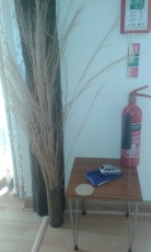 twigs and extinguisher