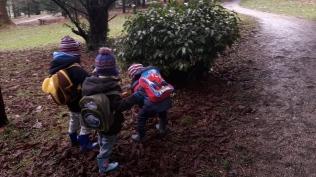 boys-exploring