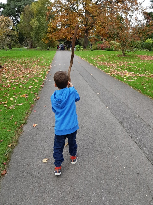 boy with a giant stick.jpg
