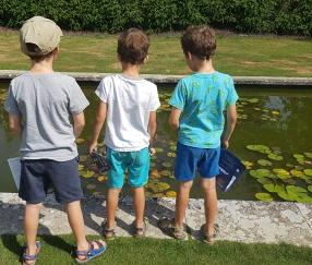 three boys - 8 and 6