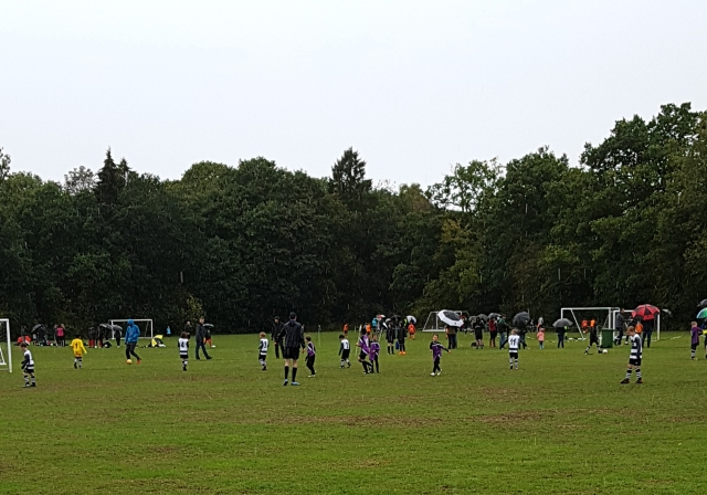 Sunday morning football 2