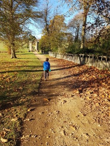 Autumn wandering